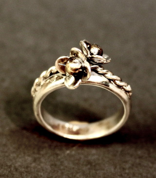 jewel: ring2